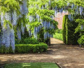 Private Walled Garden Tour