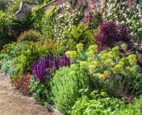 Private Walled Garden Tour