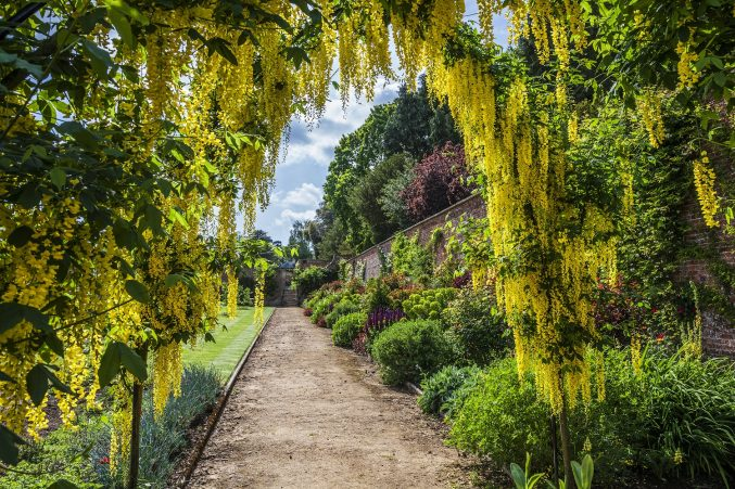 Private walled garden at Bowood