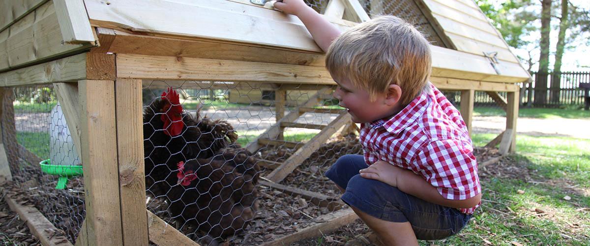 Education and School Visits at Bowood