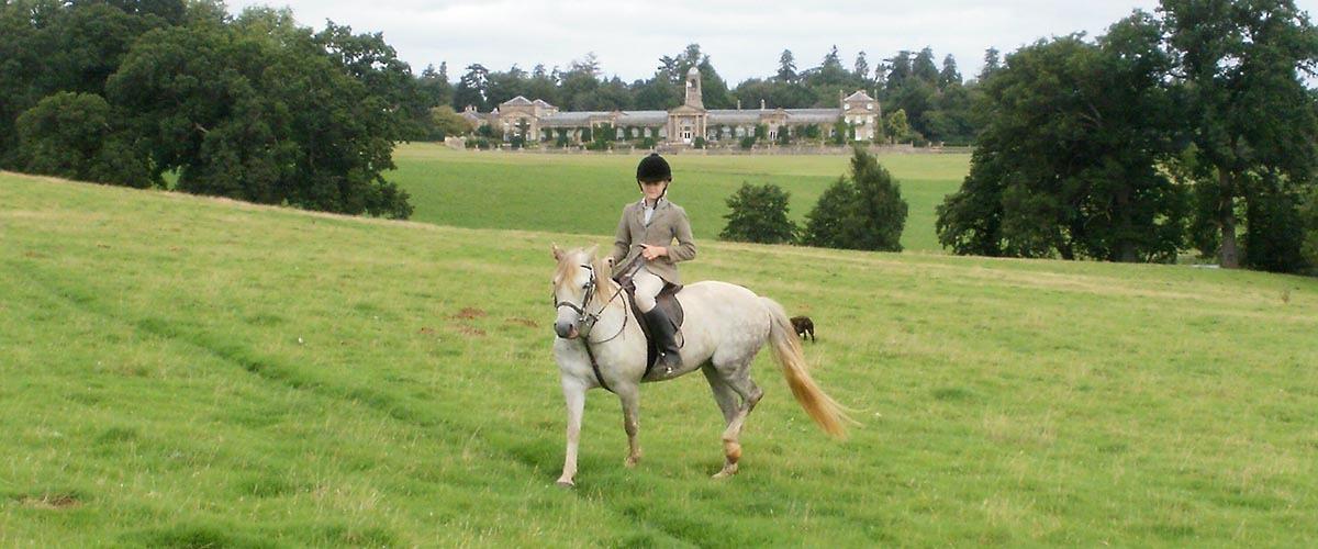 horse riding at bowood