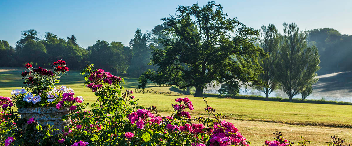 Bowood Gardens
